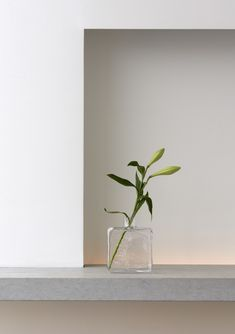 New vase Cube by Carina Seth Andersson for Skruf Home Interior, Modern Interior Design, Interior Decorating, Cream Aesthetic, Flower Aesthetic, Tableaux D'inspiration, Shadow Photography, Minimalist Photography, Arte Floral