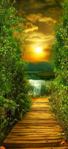 Peaceful pathway - Sunset landscape
