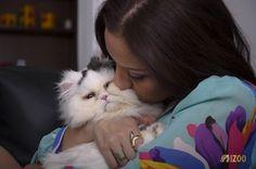 Tener un gato, es una experiencia fabulosa, igual a la experiencia que vives con FotoZoo Contactanos y déjate llevar por la magia de la fotografía en tu propia casa WA 3172731938 Animals, Pet Photography, Magick, Gatos, Fotografia, Animales, Animaux, Animal, Animais