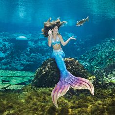 """""""Hello- This is Amy, and I wanted to say it's time to flip the page of the 2017 Mermaid calendar!"""" This limited edition calendar photographed by renowned photographer, Andrew Brusso. Tails graciously provided by the talented, Merbella Studios Inc. Mermaid Cove, Fantasy Mermaids, Mermaids And Mermen, Weeki Wachee Mermaids, Mermaid Gifs, Real Life Mermaids, Life Under The Sea, Mermaid Pictures, Fotografia"""