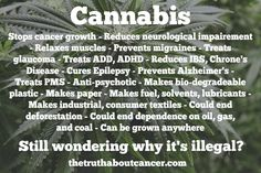 Still wondering why Cannabis is illegal? - The Truth About Cancer