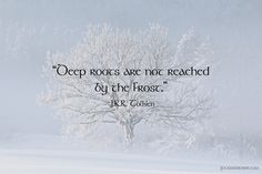 """""""Deep roots are not reached  by the frost."""""""