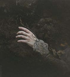 Buried Autumn by Natalia Drepina