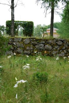 Garden of renowned Danish florist & artist Tage Andersen in forest highlands of southern Sweden.
