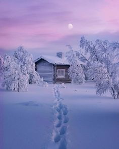 Find images and videos about winter, snow and landscape on We Heart It - the app to get lost in what you love. Winter Szenen, Winter Cabin, Winter Christmas, Snow Cabin, Winter Photography, Nature Photography, Snow Scenes, All Nature, Winter Beauty