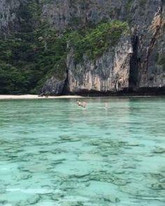Maya Bay Koh Phi Phi Leh Thailand #news #alternativenews