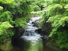 """ひなきさんさんのツイート: """"千葉県君津市の清水渓流公園にある「濃溝(のうみぞ)の滝」 都会からすぐ行ける。こんな所今すぐ行きたい。 https://t.co/cGOQkctJf4"""""""