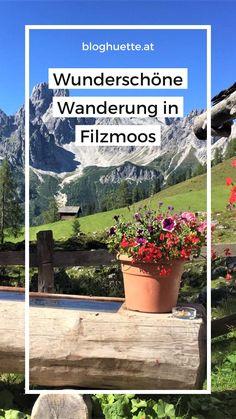 Wandern entlang des Dachsteingebirges und der Bischofsmütze, was gibt es schöneres? Sabrina nimmt euch mit auf eine ihrere Lieblingswanderungen, schaut vorbei auf bloghuette.at :) #bloghuette Helpful Hints, Activities, Plants, Mountain Range, Travel Inspiration, Alps, Hiking, Landscape, Autumn