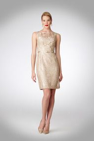 Rehearsal - Gold Lace Sheath Dress - Cocktail at Maggy London