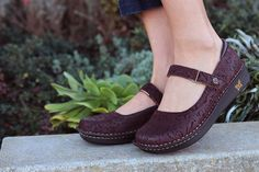 Alegria Shoes Belle in 'Choco Emboss Paisley' at Alegria Shoe Shop - now on Closeout!