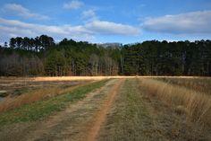 Hiking with Kids - Fort Yargo State Park – Winder, Georgia