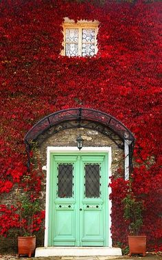 I'm not a fan of ivy, but I like this (minty green door with red ivy wall surround)
