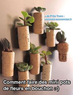 Ces pots de fleurs en bouchons de bouteilles sont super mignons. Ils sont faciles à faire et parfaits comme aimants sur le frigo !  Découvrez l'astuce ici : http://www.comment-economiser.fr/comment-faire-des-pots-de-fleurs-en-bouchon-de-bouteille.html?utm_content=buffer40608&utm_medium=social&utm_source=pinterest.com&utm_campaign=buffer