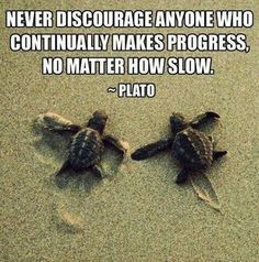 Plato. I've always been the tortoise, not the hare.   (keep moving, me)