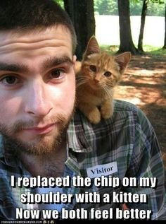 Flirting Is Easy - LOLcats is the best place to find and submit funny cat memes and other silly cat materials to share with the world. We find the funny cats that make you LOL so that you don't have to. Cute Kittens, Cats And Kittens, Ragdoll Kittens, Tabby Cats, Bengal Cats, Kitty Cats, Funny Cat Memes, Funny Cats, Cats Humor