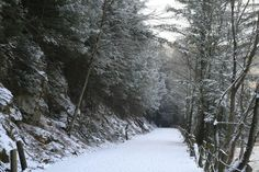 With the right trail, winter hiking can be absolutely magical!
