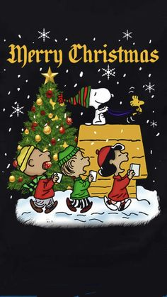 Gifs Snoopy, Snoopy Images, Snoopy Pictures, Snoopy Quotes, Peanuts Christmas, Christmas Cartoons, Charlie Brown Christmas, Christmas Humor, Peanuts Thanksgiving
