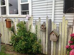 Birdhouse fence---hides the ugly meter on the side of the house