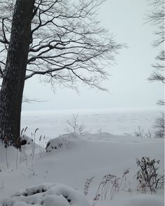 winter weekend on the lake