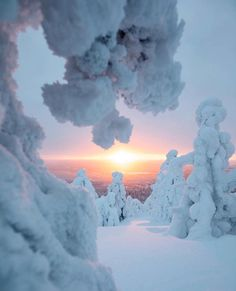 🔹The Best Of Finland Feature🔹 *** Featured artis Winter Photography, Love Photography, Travel Photography, Winter Szenen, Winter Sunset, Nature Pictures, Cool Pictures, Wilderness Explorer, Winter Photos