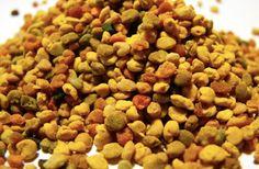 Właściwości pyłku pszczelego, czy warto go używać? Choć pyłek pszczeli nie jest tak popularny jak miód, a po rozpuszczeniu w wodzie, musimy go dosłodzić przed spożyciem, warto włączyć ten niesamowity produkt do diety. Uzupełni niedobory witamin, pomoże zrzucić zbędne kilogramy, zapobiegnie objadaniu się, a niejadkom przywróci apetyt. To jednak dopiero początek długiej listy korzyści wynikających...Read More »