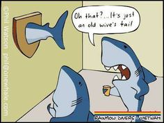 #todaysHumour . . . .  #joke #jokes #pun #puns #clever #wordplay #playonwords #playwithwords #funny #funnies #todaysfunnies #fun #jokeoftheday #punoftheday #sillyjokes #humour #humor #humourous #humorous #PADI #scubadiving #scuba #diving #shark #sharks #sharklife