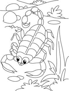 Scorpion Coloring Pages: Here is our collection of scorpion coloring sheets for your kids. Insect Coloring Pages, Animal Coloring Pages, Coloring Pages For Kids, Classroom Crafts, Preschool Crafts, Classroom Ideas, Colouring Pics, Coloring Sheets, Scorpion