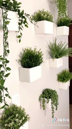 Indoor Plant Wall, Plant Wall Decor, Hanging Plant Wall, House Plants Decor, Indoor Plants, Wall Herb Garden Indoor, Wall Mounted Planters Indoor, Wall Hanging Plants Indoor, Wooden Plant Stands Indoor
