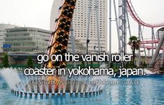 If I could wish for anything… I would wish to go on the Vanish roller coaster in Yokohama, Japan.