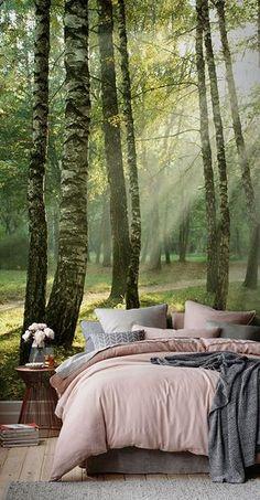 Wenn Sie Ihrer Inneneinrichtung wirkliche Textur und Licht hinzufügen möchten, schauen Sie sich nicht weiter um, als bis zu unserer Fototapete eines Waldes bei Sonnenaufgang. Wundervoll natürliche Grün- und Gelbtöne erzeugen eine Fototapete, die in jedem Zimmer des Hauses absolut atemberaubend aussehen wird.