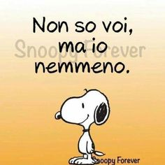 Salvato da Linda Poli Verona, Simplicity Quotes, Snoopy Quotes, Book Markers, Charlie Brown Peanuts, Peanuts Gang, Snoopy And Woodstock, Vignettes, True Stories