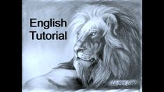 Easy LION drawing for beginners graphite pencil Love Drawings, Easy Drawings, Animal Drawings, Drawing Animals, Doodle Drawings, 3d Drawing Techniques, Drawing Tips, Sketching Tips, Drawing Reference