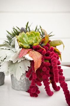 Centerpiece containing succulents, dusty miller, hanging Amaranthus, and Eryngium.
