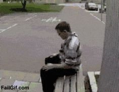 """The 50 Greatest """"Epic Win"""" GIFS In The History of the Internet,,benchflip-compressor"""