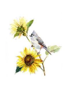 Watercolor Sunflower, Watercolor Bird, Watercolor Paintings, Fine Art Prints, Canvas Prints, Botanical Flowers, Gloss Matte, John 8, Poster Size Prints