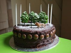 The Lion, Witch and the Wardrobe Cake and lovely narnia party