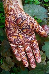 ReMarkable Blackbird, based out of Maine. AMAZING Henna work! 'Wedding - Hands'