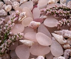 summer blush - shared by joanne on sea  glass lovers