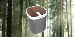 Sonos Play 1 mit wunderschönem Nussholz-Design.  Made with passion for you by Playstyler®