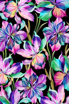 Floral Fantasia – Illuminated Lily – DIGITAL PRINT FABRIC Digitally printed, flowers are about from the 'Flora Fantasia' collection by P&B Textiles. Flower Wallpaper, Wallpaper Backgrounds, Wallpapers, Watercolor Flowers, Flower Art, Printing On Fabric, Floral Prints, Floral Fabric, Drawings