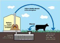 Biogas Generators
