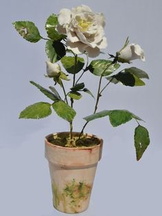 "Vieuxtemps Porcelain, White English Rose approximately 15"" x 7. Porcelain Flowers, porcelain pot with tole leaves and sems"