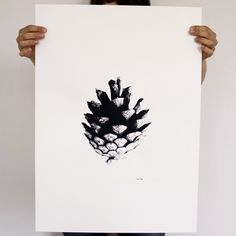 Kotten – poster