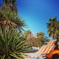 #Campsite#Camping#France#French#Portiragnes#Vias#Beach#Plage#Sun#Soleil#Vacances#Holidays#Sablons#Hérault#Like#Mer#Summer#Piscine#Summer#Mobilhome#Sea
