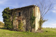 Southern France, between Toulouse and Montauban. Abandoned Property, Abandoned Mansions, Abandoned Places, Toulouse, Forgotten Man, Derelict Buildings, Haunted Places, The Locals, Photos