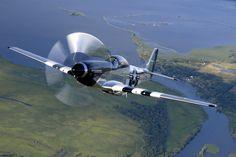 "world famous p-51 ""quicksilver"""