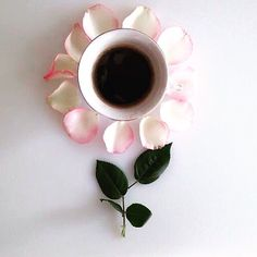 #Flowers and #coffee make everything better!  Good morning, y'all!!! 😘🍀🌺🙏🏻❤️