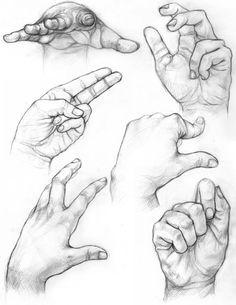 Hand Studies/Drawing w/Contour lines | passart