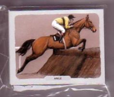 Great Racehorses by Equestrian Artist Nigel Brunyee set of 20 Trading Cards