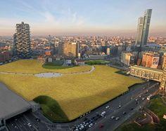 Un campo di grano di cinque ettari tra i grattacieli di Porta Nuova a Milano, come mostrano questi rendering. È il nuovo progetto di arte ambientale dell'artista americana Agnes Denes, sperimentato per la prima volta a New York nel 1982.  Wheatfield , il nome dell'opera mostrata nei rendering